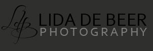 Professional Wedding Photographer logo
