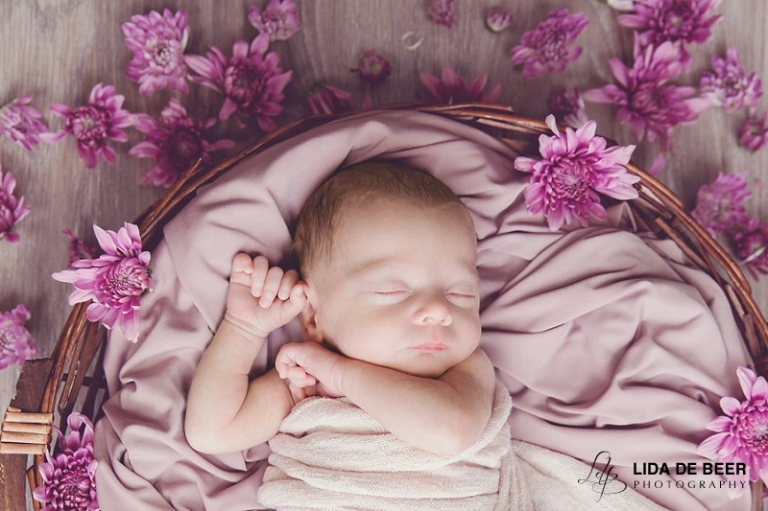 newborn baby girl and pink flowers